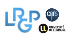 CNRS-LRGP